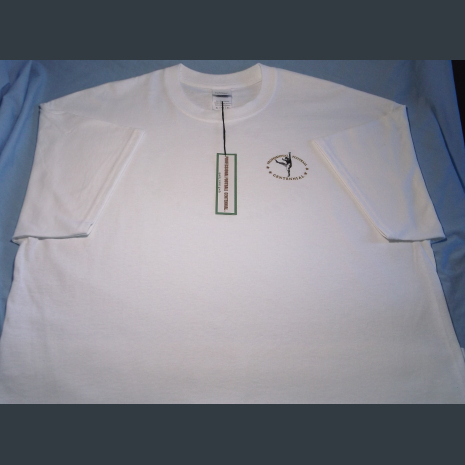 Pro Football Centennial logo quality cotton shirt